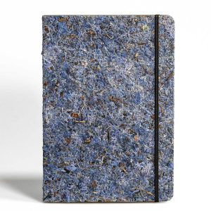 PureBooks. Moas Blau.