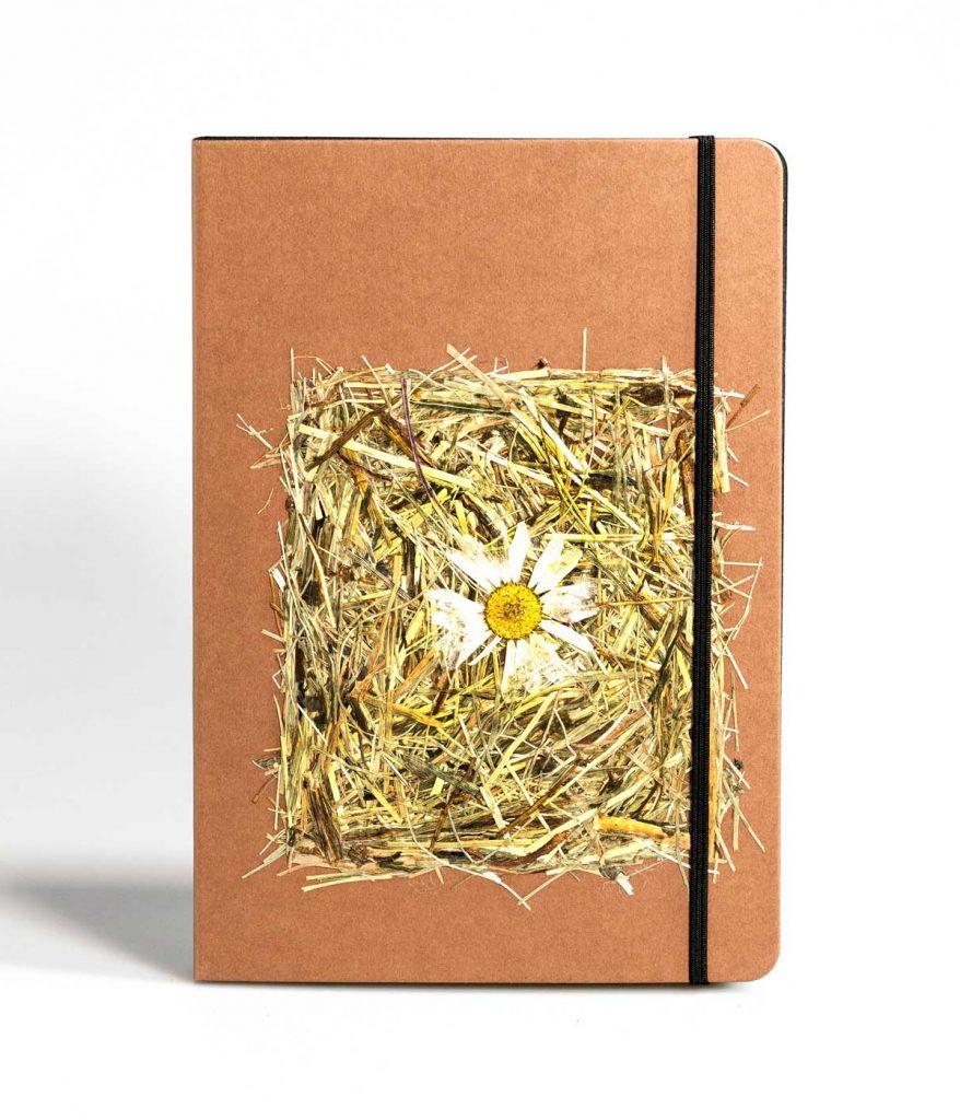 PureBooks. Wildspitze Magarite.